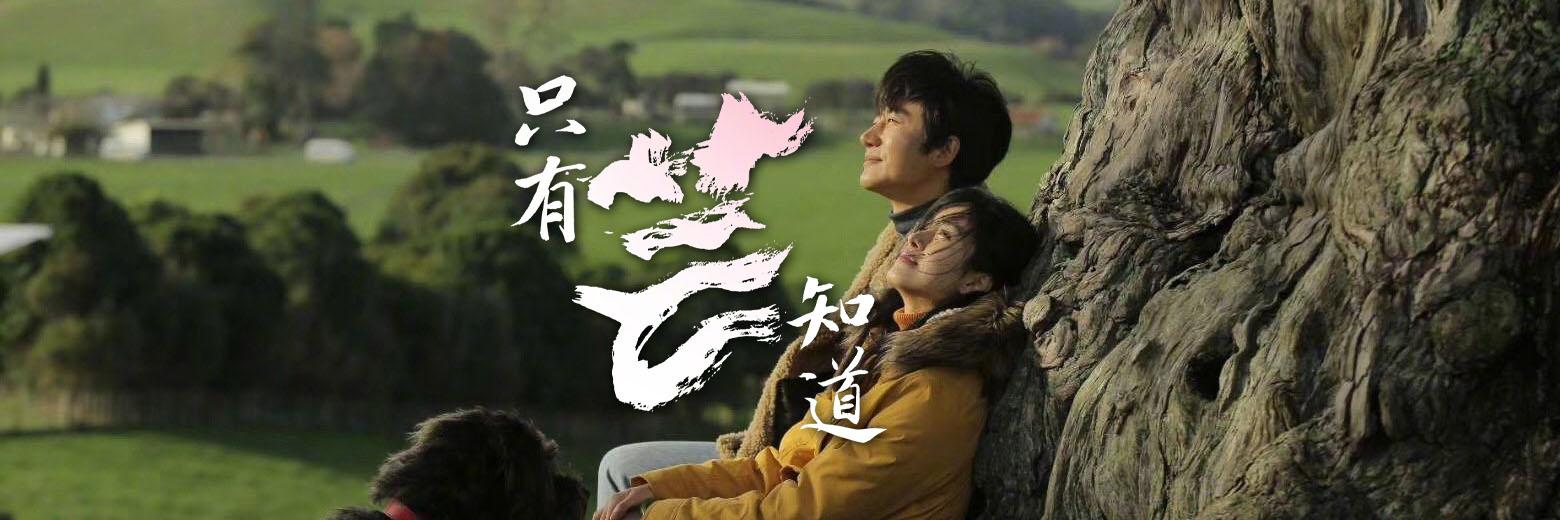 冯小刚挚友真实爱情故事改编